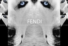 "Collection inspired by ""FENDI"" 2013"